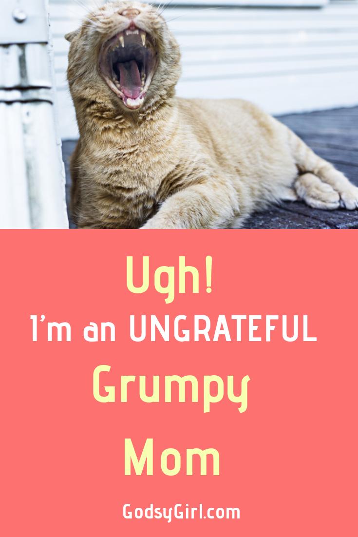 Don't be a grumpy, ungrateful mom